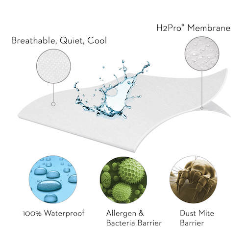 allergen protection from mattress encasement